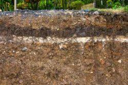 Soil in Depth